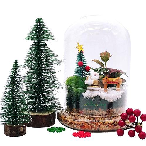 Christmas Dome Terrarium