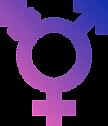 A_TransGender-Symbol_ctsy-ParaDox-wikime
