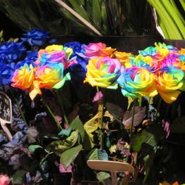 23 Blumen