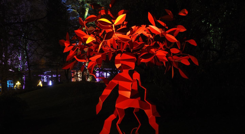 Winterlichter 2018 Spendenbaum