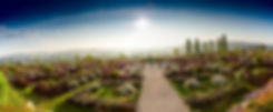RosenParkDraeger_Panorama.jpg