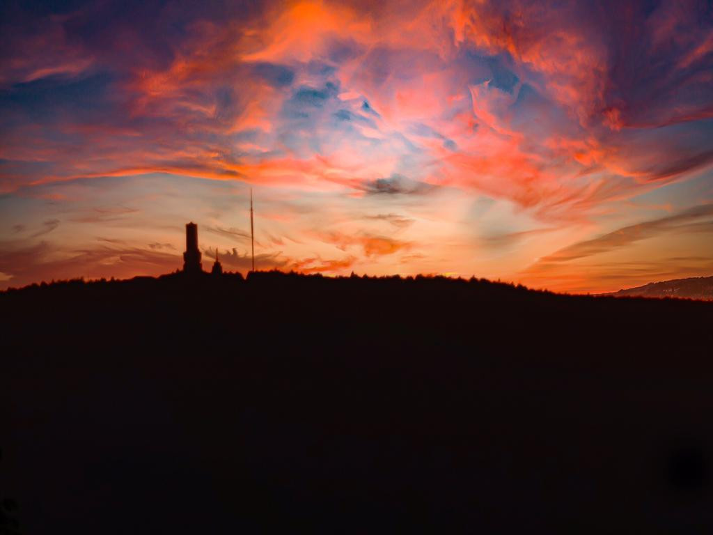 Taunushöhen im Abendlicht