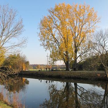 Herbststimmung an der Nidda