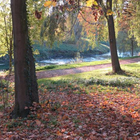 Herbst an der Nidda 2