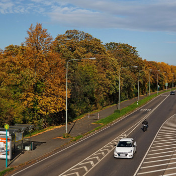 Herbst an der Ausfallstraße