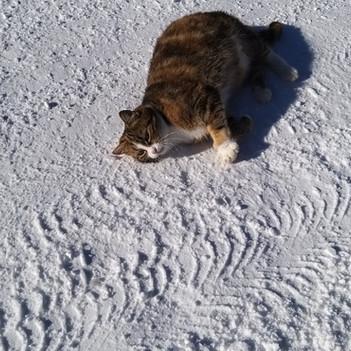 Wohlfühlen im Schnee