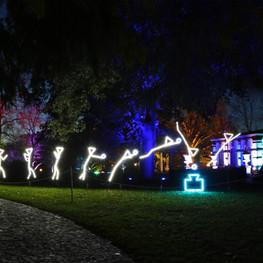 Winterlichter 03 Springer.jpg