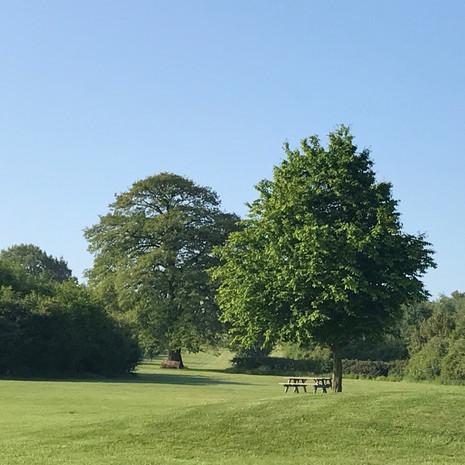 Bawdon Lodge Farm Grounds