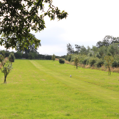 Bawdon_Lodge_Farm_Certificated_Location_