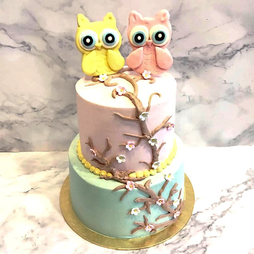Pastel Colour Cute Owls Themed Two Tier Cake
