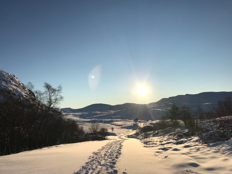 Utsikt mot Bergstølen 01.01.21
