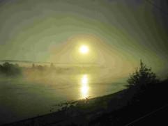 Nebelstimmung auf dem Rhein