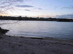 Abendstimmung am Beueler Rheinufer