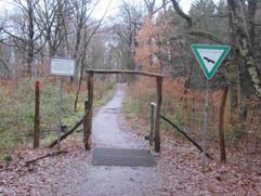 Spaziergang durch die Wahner Heide