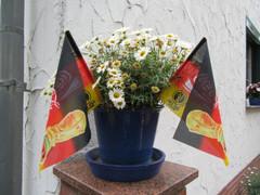 Deutschland vs Italien