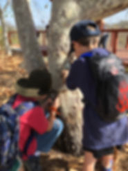 Kids magnifying glass tree.jpg