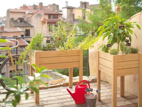 LE BAC AUTOFERTILE : 5 bonnes raisons de démarrer son potager, même sans jardin !