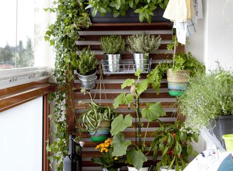 Aménagement de balcon et terrasse avec des articles IKEA