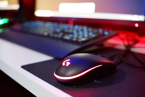 マウス画像.JPG