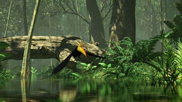 Hutan Kita | Opening Montage