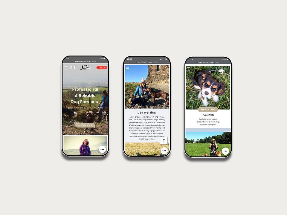 Take-the-Lead_Phone.jpg