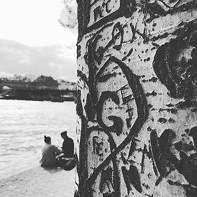 Arborglyphs on the Seine, Paris. Photography Estelle Burton