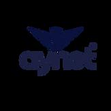 Aynet Logo