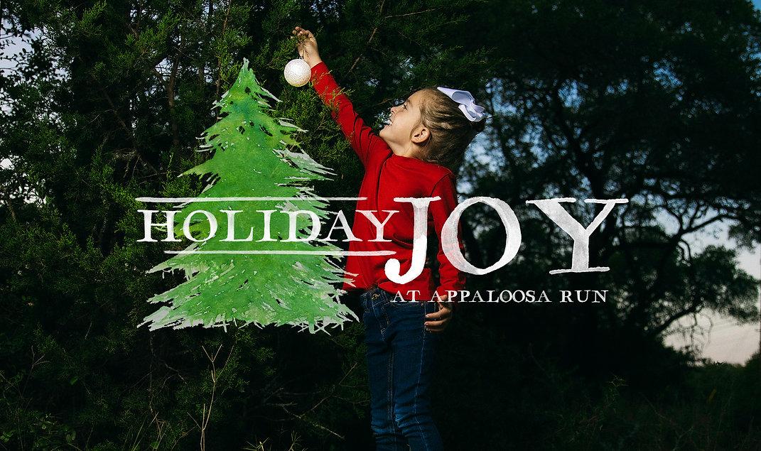 HolidayJoyAR-rectangle.jpg