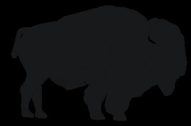pcco buffalo.png