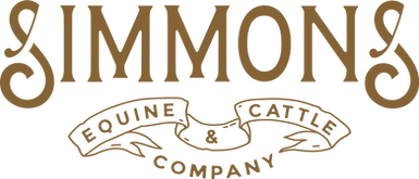 Simmons E&Co name.png