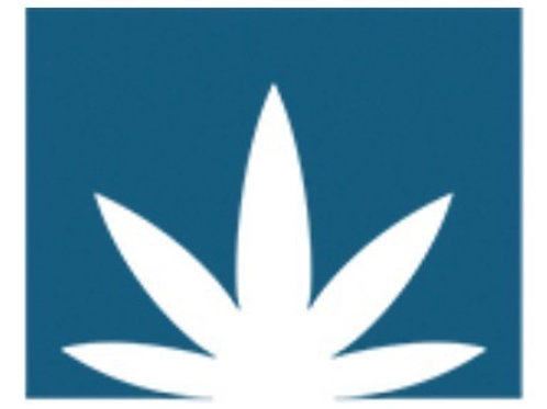 Cannabis Beauty Defined Moisturizer
