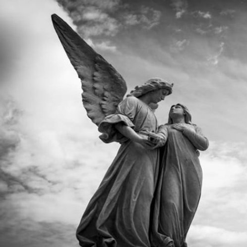 Birth Angels Reading