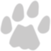 paw-watermark-300x298.png