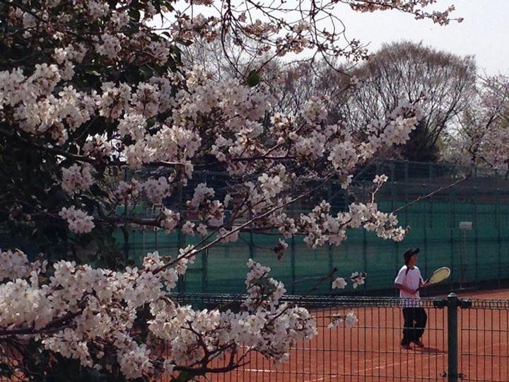 Facebook - 桜の咲く中、大阪大会、開催中!