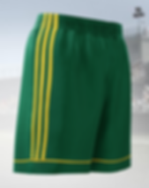Kampshorts Adidas.PNG