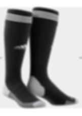 Adi sock.PNG