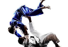 adesivo-carro-jiu-jitsu-esporte-arte-mar