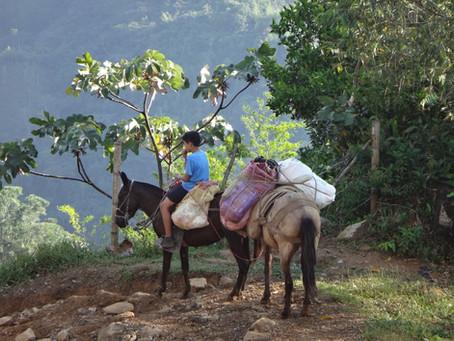 Séjour en Colombie - Novembre 2016