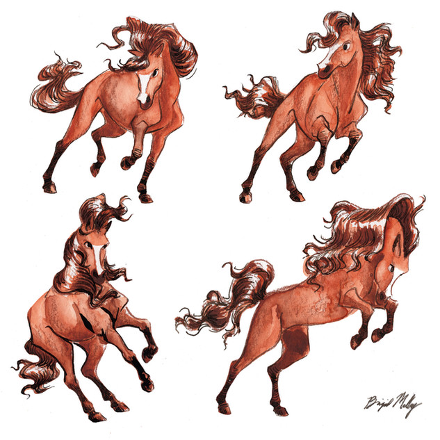 Horse Character sketches Together.jpg