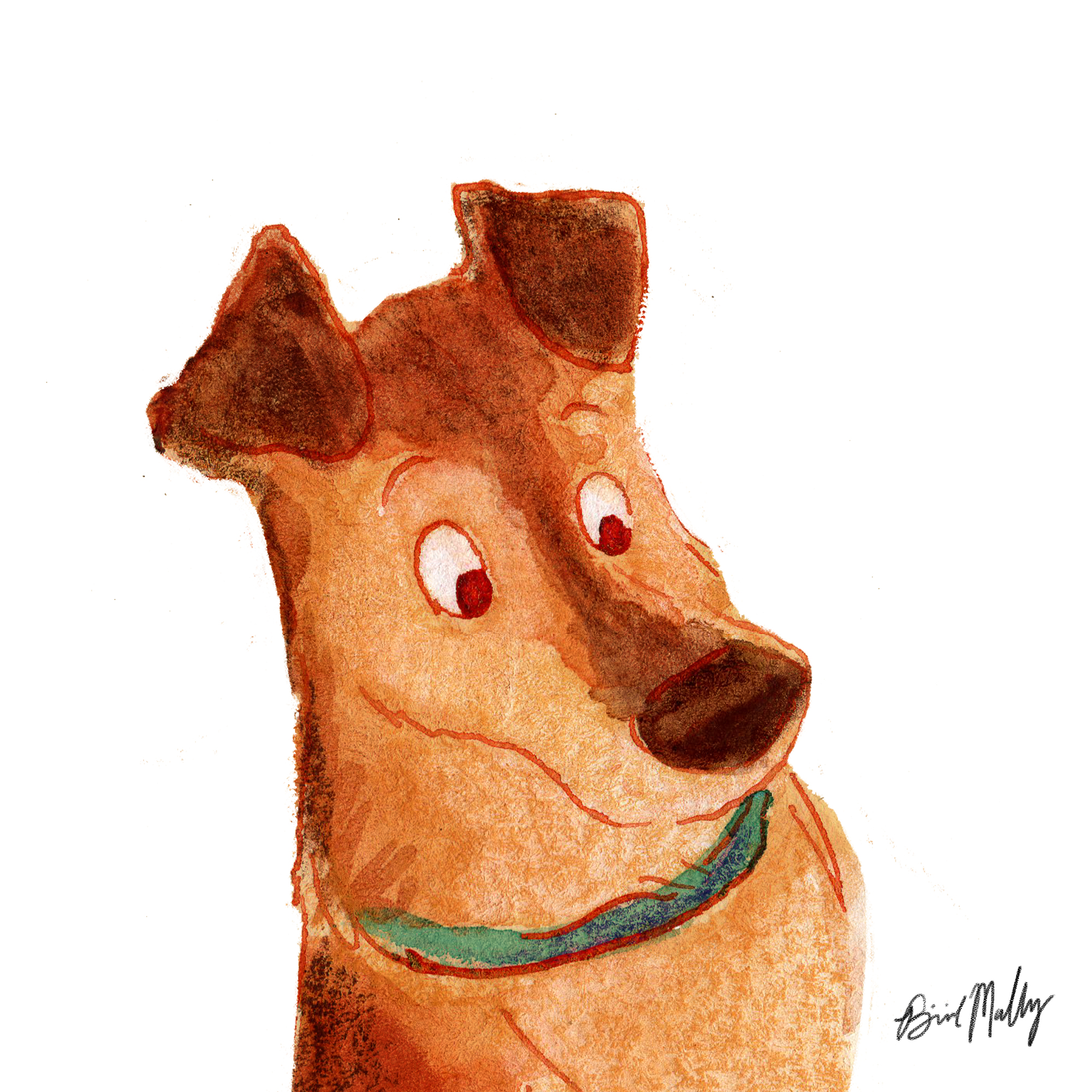 Dog Character design 4