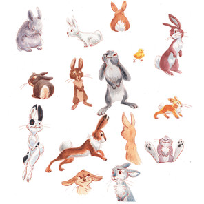 bunnies all together.jpg