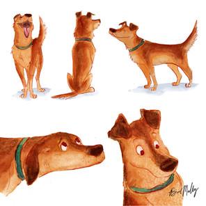 Dog Character Design