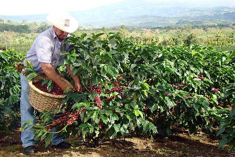Costa Rica El Balar.jpg