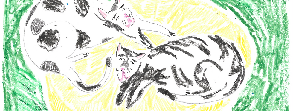 Pair of Cats on a Yellow Pouffe Original Drawing