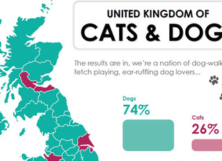 The results are in - do dogs or cats rule in your area?
