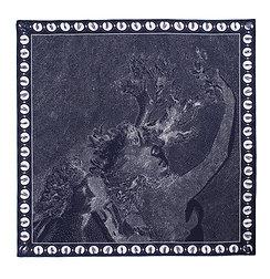 Apollo & Daphne - silk chiffon