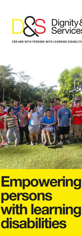 D&S Empowering persons with learning disabilities