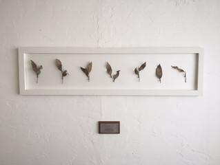 filithematerira  exhibition