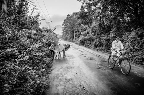 Sri Lanka_AA-79.jpg
