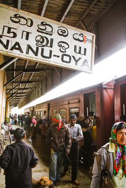 Nanu-Oya, Sri Lanka